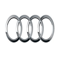 Audi Speed Limiters