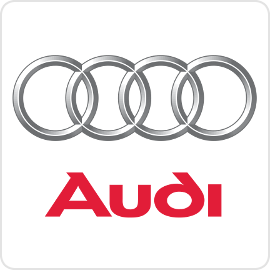 Audi Runlock Systems