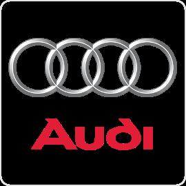 Audi Cruise Control