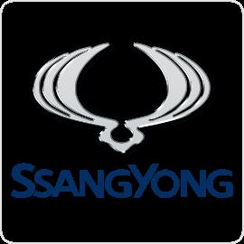 SsangYong Cruise Control