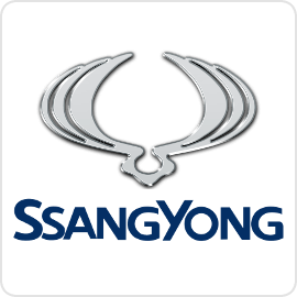 SsangYong Speed Limiters