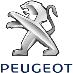 Peugeot Speed Limiters