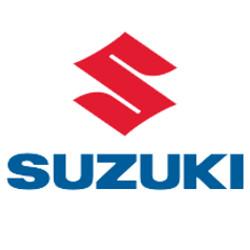 Suzuki Speed Limiters