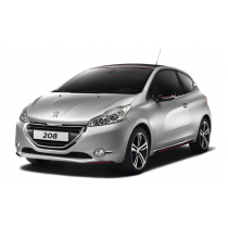 PRECISION SPEED LIMITER PEUGEOT 208