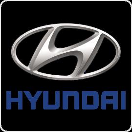 Hyundai Speed Limiters
