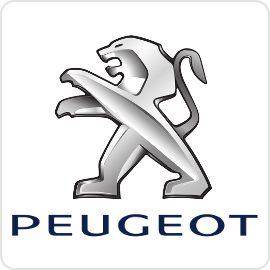 Peugeot Cruise Control