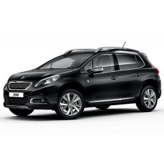 PRECISION SPEED LIMITER PEUGEOT 2008