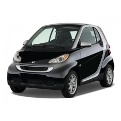 PRECISION SPEED LIMITER SMART FORTWO